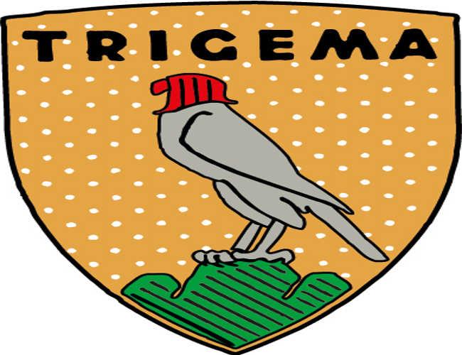 altes TRIGEMA Logo