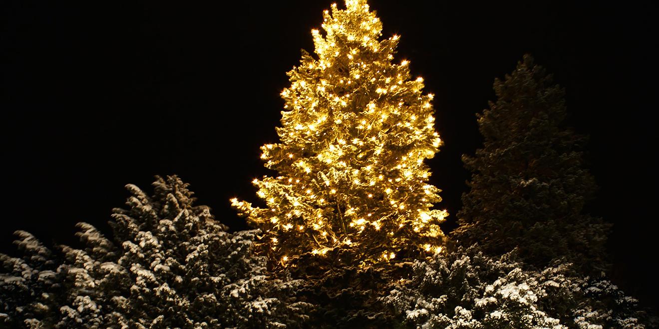 Weihnachtsbaum, Tradition der Weihnachtsbäume, Christbaum, Tannenbaum, Baumschmuck, Christbaumkugeln, Weihnachtsschmuck, Lametta, Lichterkette, Weihnachten, Brauch der Weihnachtsbäume, Christbaum schmücken