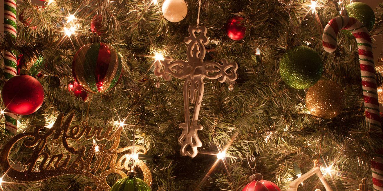 Die Tradition Der Weihnachtsbaume Trigema Magazin