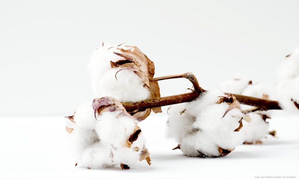 Baumwolle auf weißem Tisch.