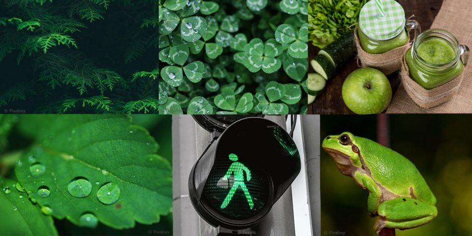 Die Bedeutung von Grün in der Farbpsychologie