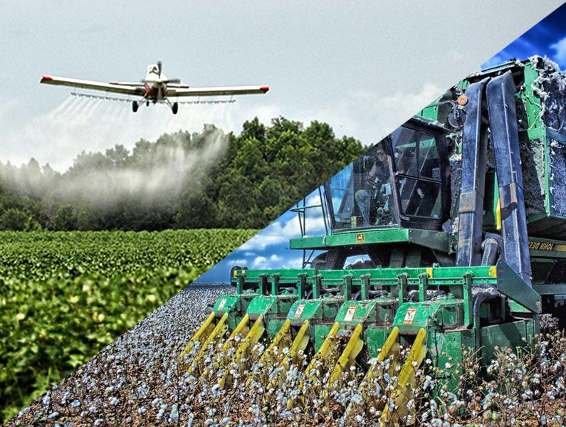 Bio-Baumwolle, Baumwolle, Bio-Kleidung, Nachhaltige Baumwolle, Ökologische Baumwolle, Pestizide, Pflanzenschutzmittel
