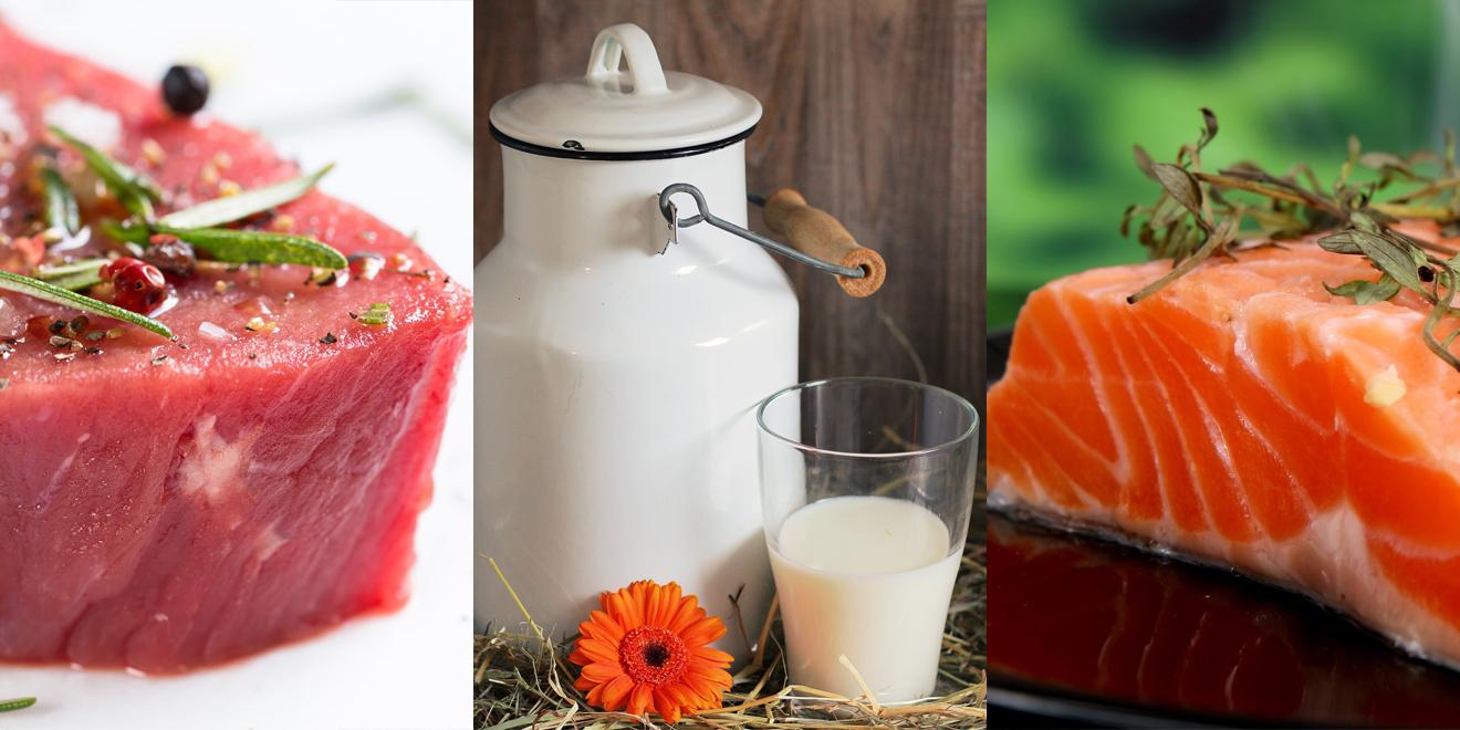 Nährstoffe für die Muskeln, Muskeln, Nährstoffe, Sport, Ernährung, Eiweiss, Protein, Proteine