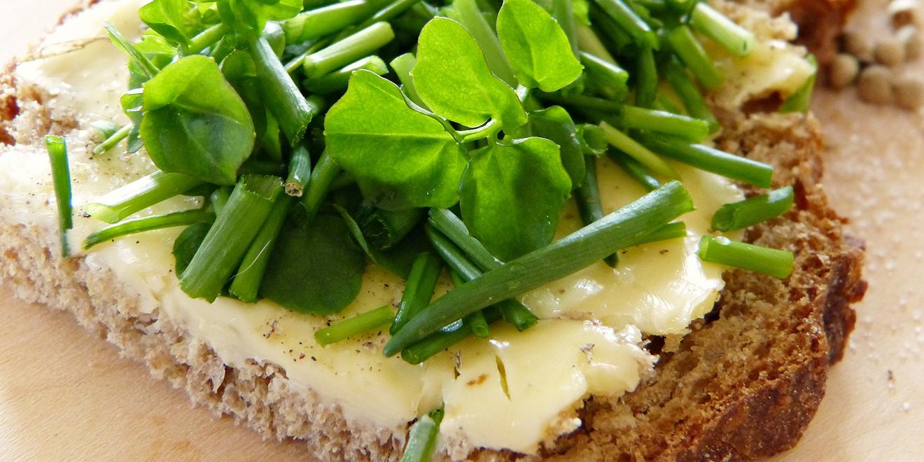 Cellulite, Orangenhaut, Bindegewebe, Tipps gegen Cellulite, Sport bei Cellulite, Ernährung
