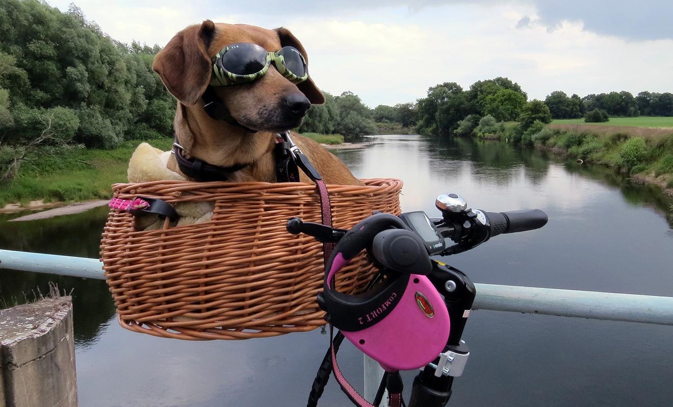 Urlaub mit dem Fahrrad, Radtour, Urlaub mit dem Rad, Fahrradurlaub, die schönsten Radwege in Deutschland, Radtouren durch Deutschland, Radtour in Deutschland, Fahrradtour
