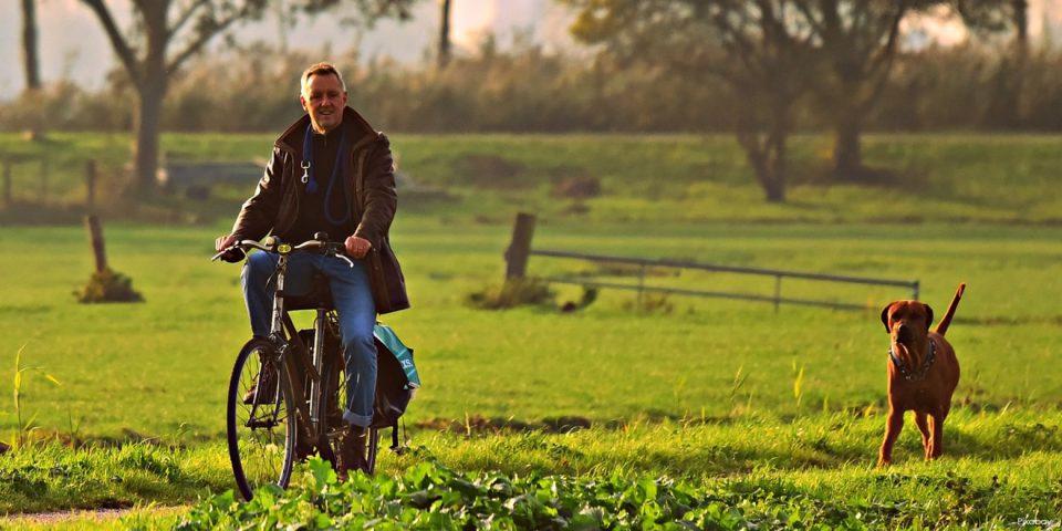 Radfahrer und Hund sind draußen an der frischen Luft. Bewegung hilft beim natürlichen Entwässern.
