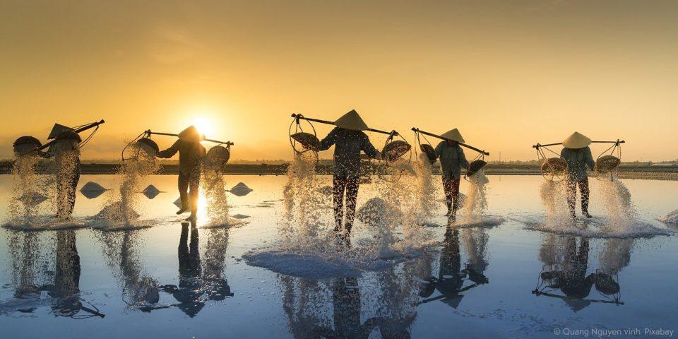 Reisfeldarbeiter in Asien arbeiten ohne Arbeitszeitregelung