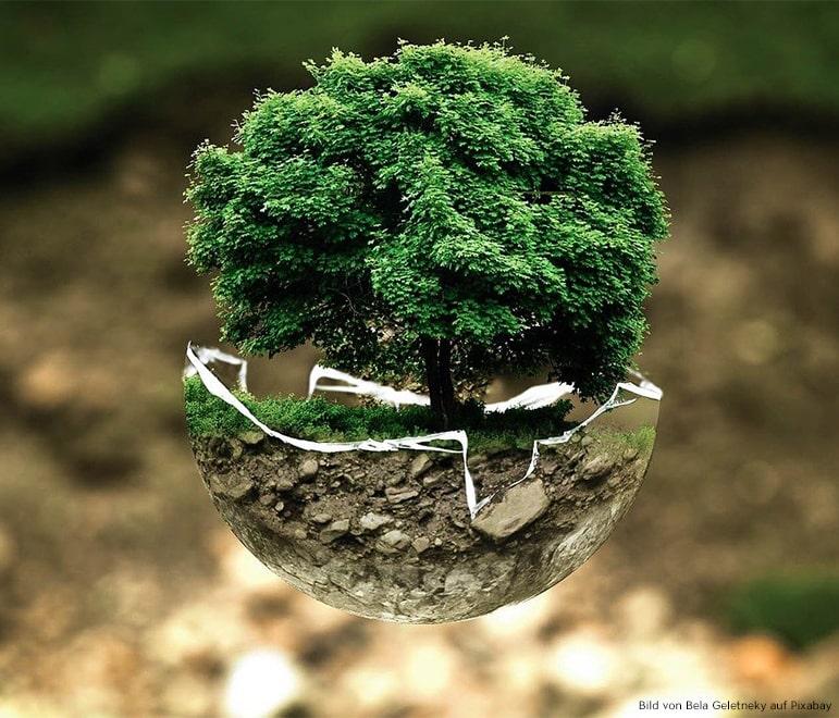 Nachhaltige Mode darf nicht nur soziale Bedingungen sichern, sondern muss auch die Umwelt und den Menschen schützen.
